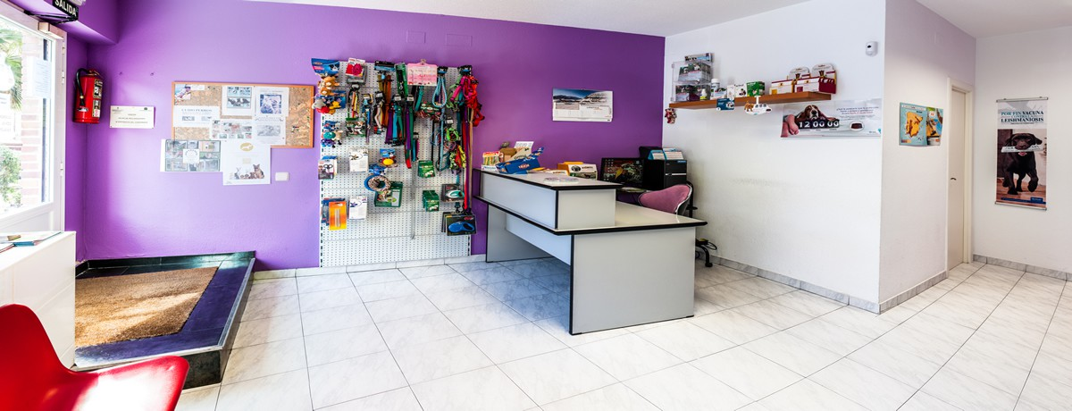 Clinica veterinaria san gregorio en galapagar cinica - Diseno de clinicas veterinarias ...